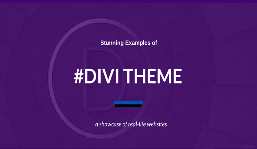 themes Divi cho wordpress