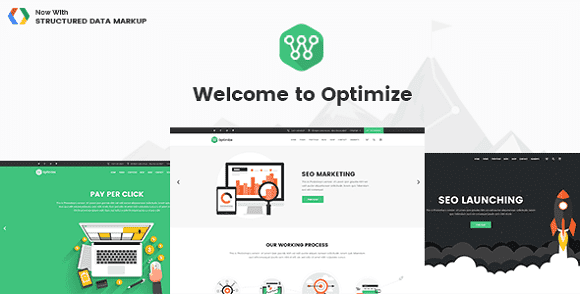 Theme Optimize SEO, Digital Marketing, Social Media v1.8 wordpress