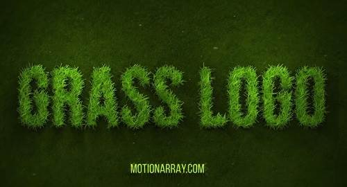 Template Grow Grass Logo – After Effects Motion Array