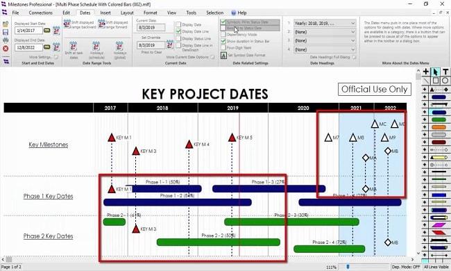 KIDASA Software Milestones Professional
