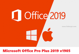 Phần mềm soạn văn bản Microsoft Office Pro Plus 2019